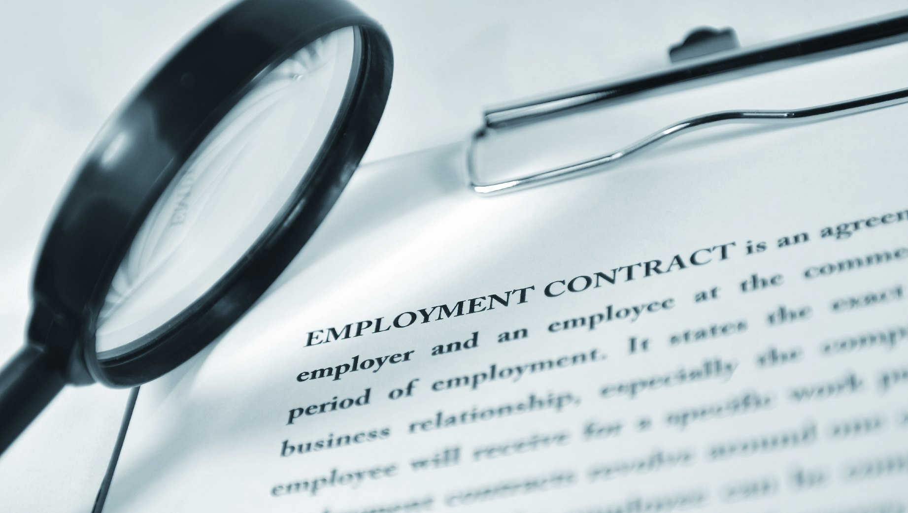 Labour law v the law of contract and the Constitution as amicus curiae?