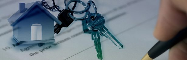 Slew of new property laws will have most dramatic effect on agencies and agents – experts